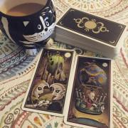 Deviant Moon Tarot Premier Edition 2