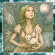Dream Fairies Inspirational Cards 3