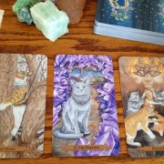 Mystical Cats Tarot 3