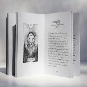 The Wild Unknown Tarot Guidebook 3