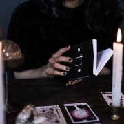 The Wild Unknown Tarot Guidebook 6