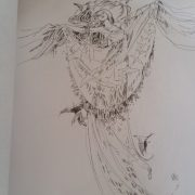 Shadowscapes Coloring Book 4