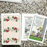 Wonderland Tarot in Tin 2