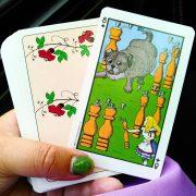 Wonderland Tarot in Tin 5