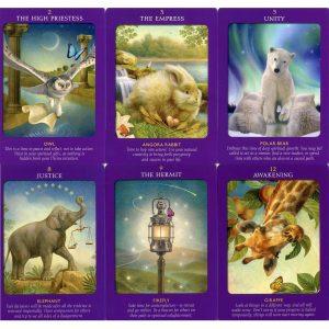 Animal Tarot Cards 7
