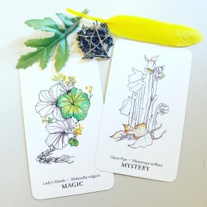Hedgewitch Botanical Oracle 5