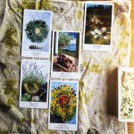 The Herbcrafters Tarot 5