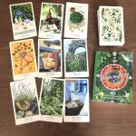 The Herbcrafters Tarot 6