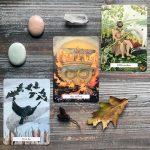 Witches Wisdom Tarot 6